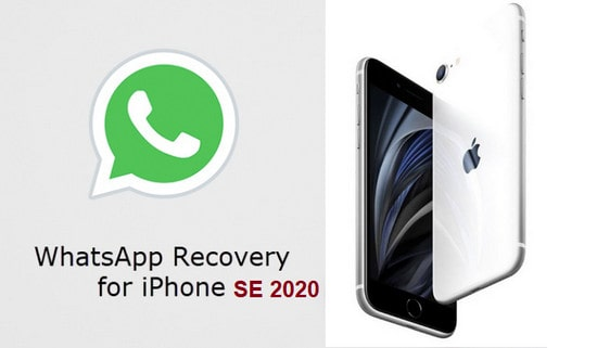 Transfer WhatsApp from old iPhone to iPhone SE 2020